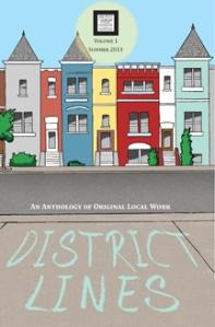 2013 District Lines