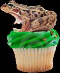 Jabba's Cupcake